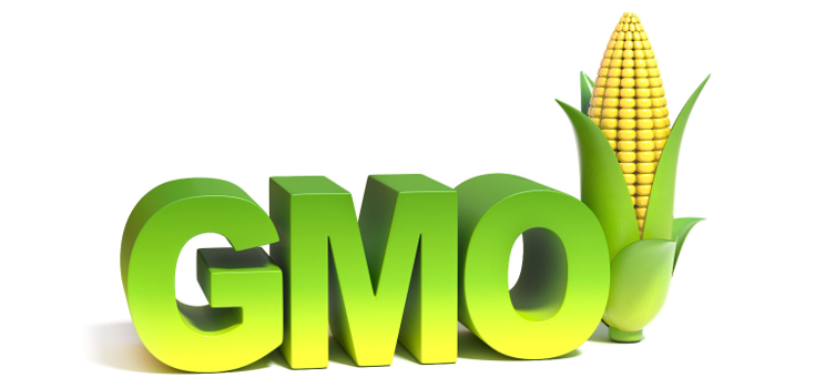 gmo-word-white-735-350.png